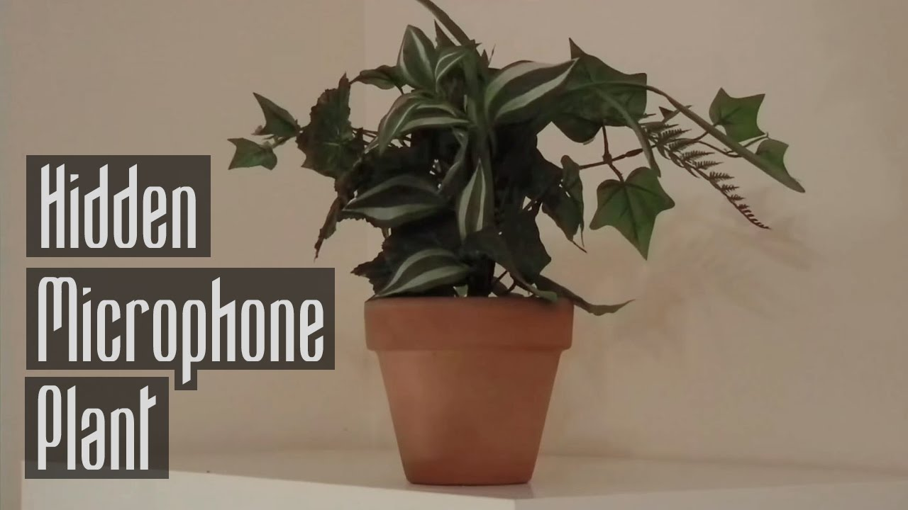 How To Make A Hidden Microphone Plant Youtube