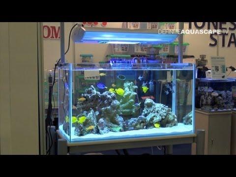 Aquascaping - Marine Aquarium by Honest Star, part 1