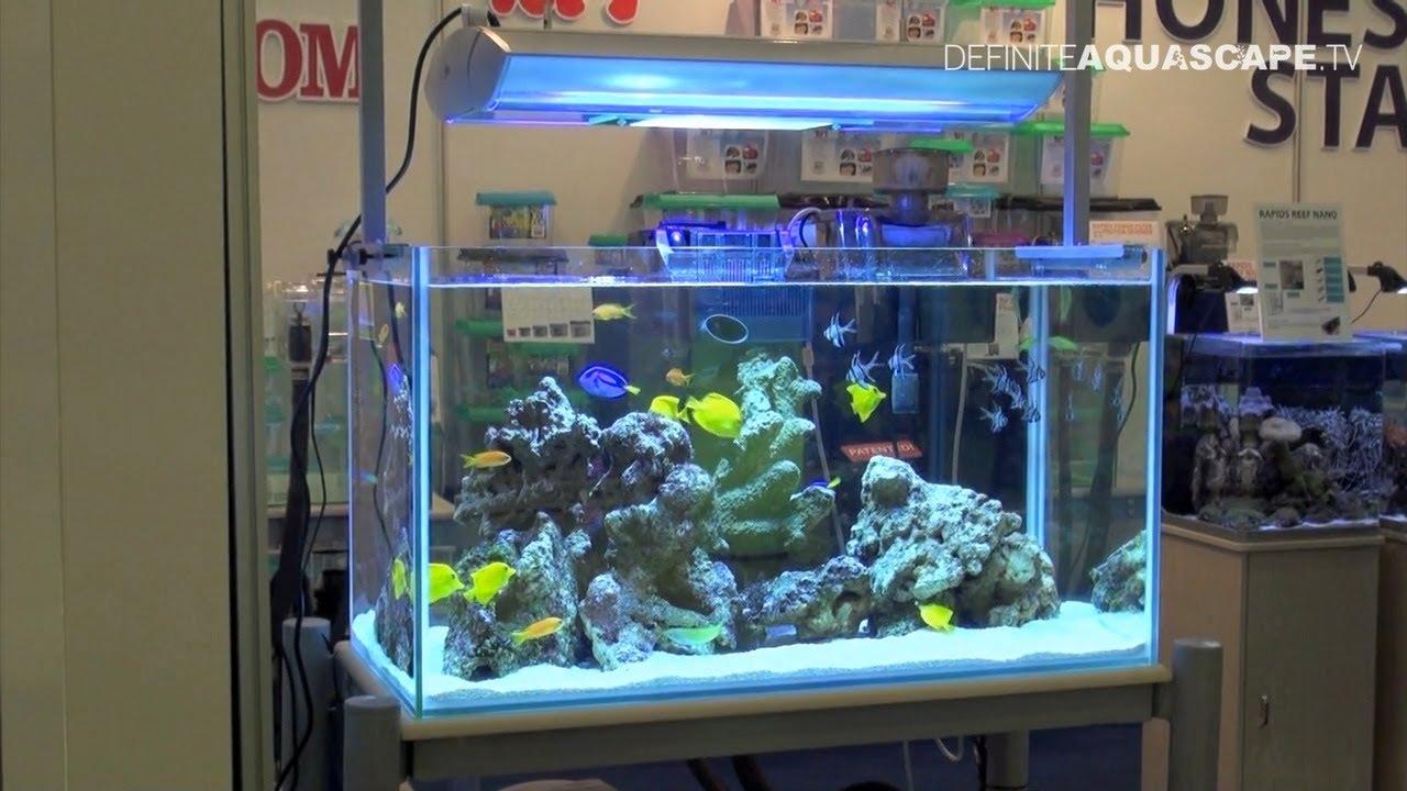 Aquascaping marine aquarium by honest star part 1 youtube for Marina fish tank