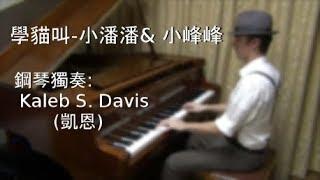 【鋼琴版】學貓叫 - 小潘潘、小峰峰 Piano Cover by Kaleb S. Davis