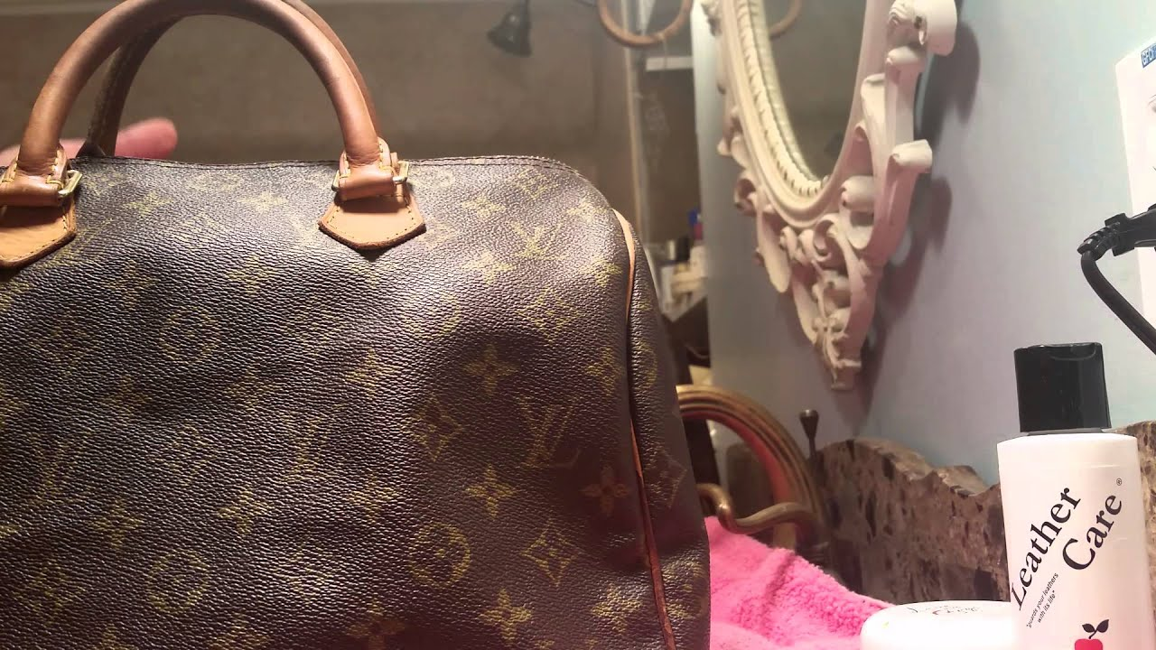 662c96f2fad7e Results of the Lovin My Bags vs. Apple cleaners Louis vuitton (Speedy  2)