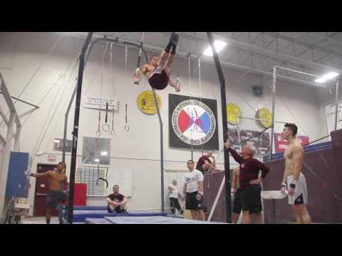 Springfield college mens Gymnastics 2017