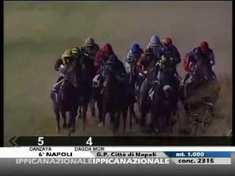 Premio Città di Napoli 2012 (LISTED RACE)
