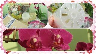 Покупки в ОБИ + посылка(Привет! В этом видео покажу новую орхидею, кору сосны, химию, классический субстрат для орхидей купленные..., 2016-11-21T10:02:27.000Z)