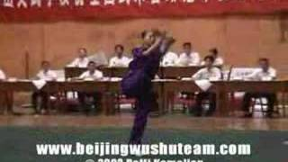 2002 China National Wushu Competition CQ/NQ Trailer