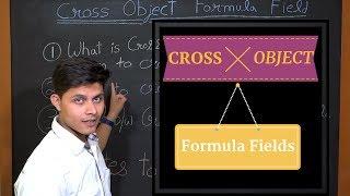 What are Cross Object Formula fields in Salesforce?