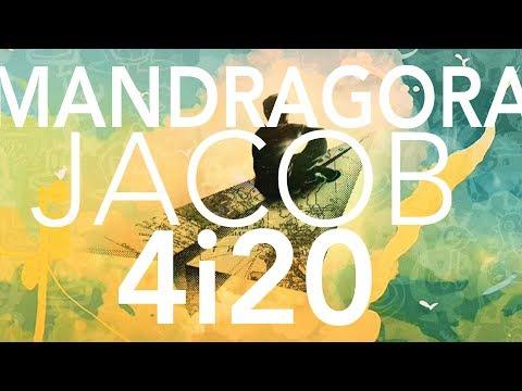 4i20 & Mandragora & Jacob - A Handfull Of Moments (Original Mix)