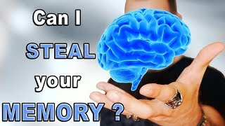 brain athlete
