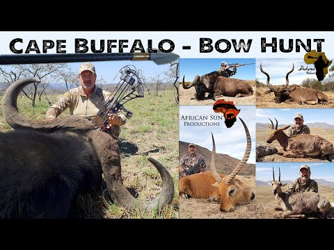 Hunting Buffalo And Plains Game With Bow And A Few Rifle Hunts.