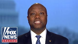 Tim Scott: 2020 Dems are in trouble if they do not take on Bernie