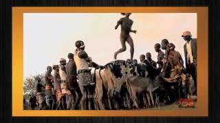 Бег по спинам быков за право создать семью