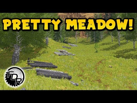 Into The Medow | FS17 | Singleplayer Logging #163