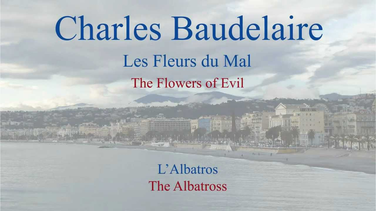 French Poem - L'Albatros by Charles Baudelaire - Slow Reading ...
