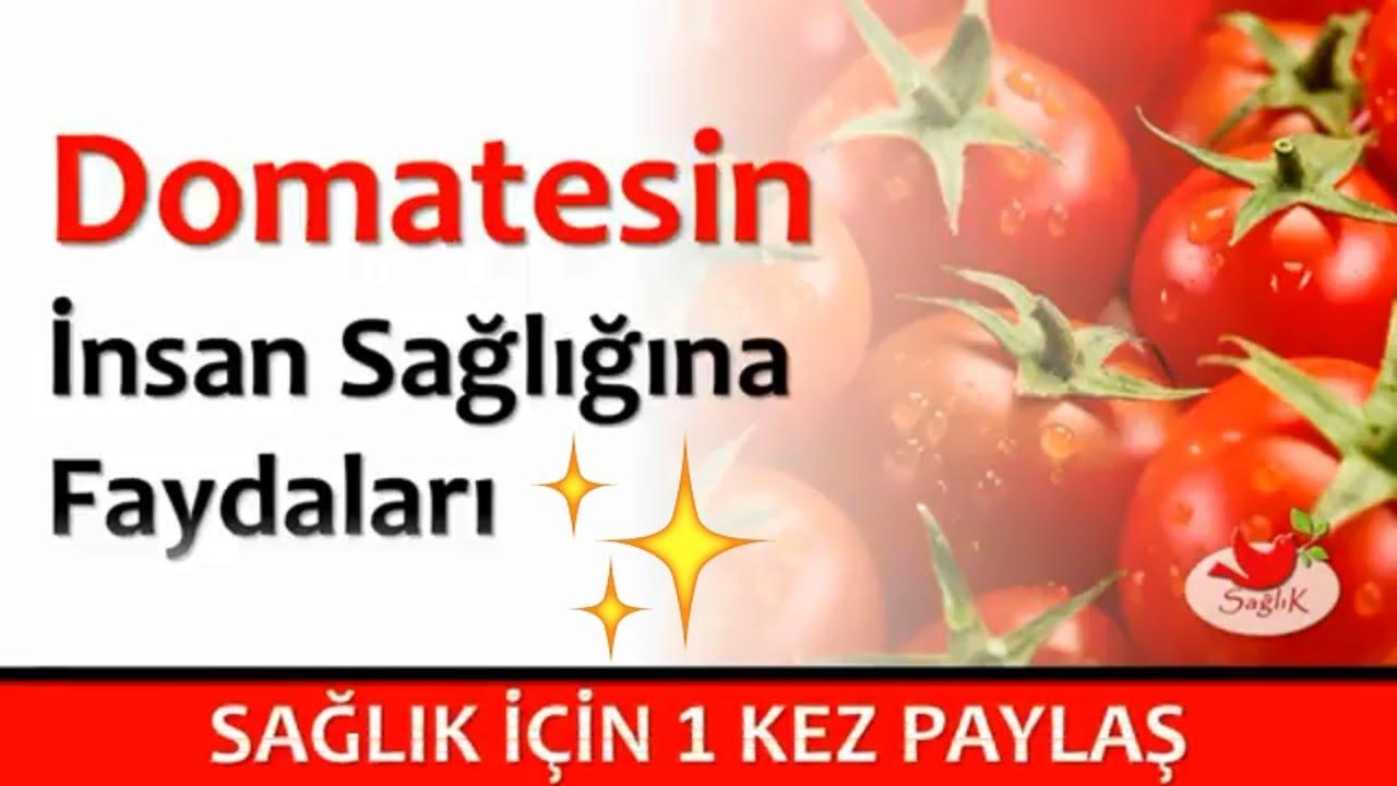 Salatalığın Bilinmeyen 9 Faydası