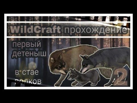 Прохождение WildCraft ▶ первый волчонок в стае волков •|[открываем сундуки|]•_N.2