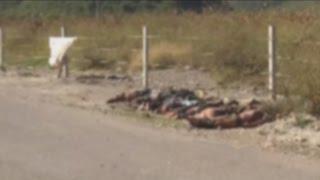11 cadáveres hallados a la orilla de una carretera en Guerrero