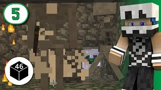 Staircases of Sweet Bugger All | Snowcrack UHC – Season 46, Episode 5