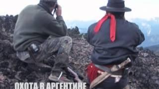 Французские фильмы об охоте