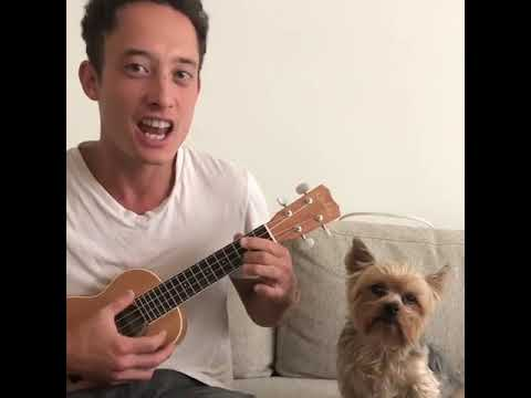 Joey Brooks - Dog Is Unimpressed By His Human's Serenade