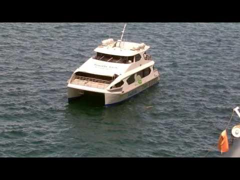 Tender boats at Port Denarau, Fiji