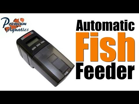 Eheim Everyday Fish Feeder Unboxing And Setup