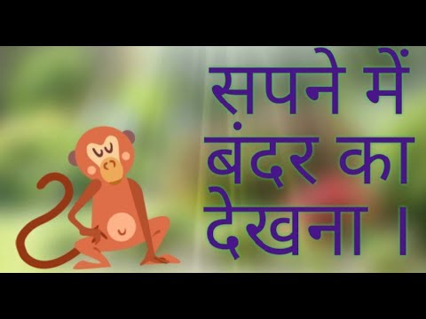 Sapne me bander dekhna monkey dream meaning in Hindi monkey dream meaning