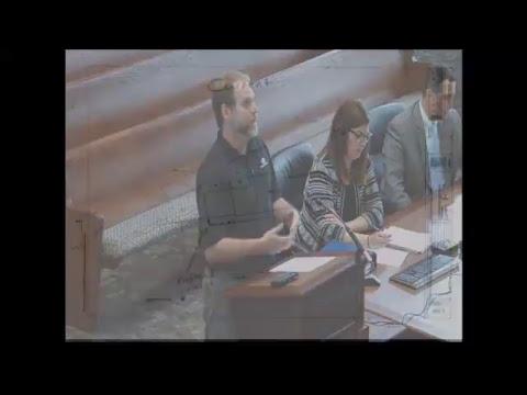 Board of Zoning Appeals: June 13, 2017