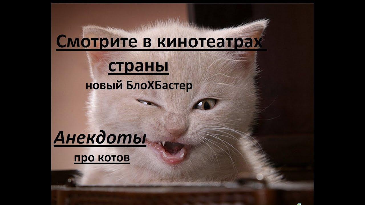 Анекдоты про котов ( ржака ) - новый БлоХБастер. - YouTube