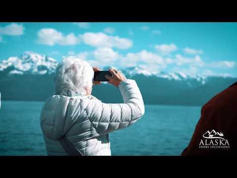 Whale Watching And Mendenhall Glacier Tour - Juneau, Alaska