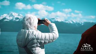 Whale Watching & Mendenhall Glacier