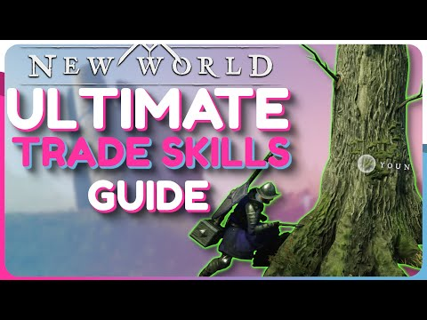 New World: Ultimate CRAFTING Guide – How To LEVEL Your TRADE SKILLS