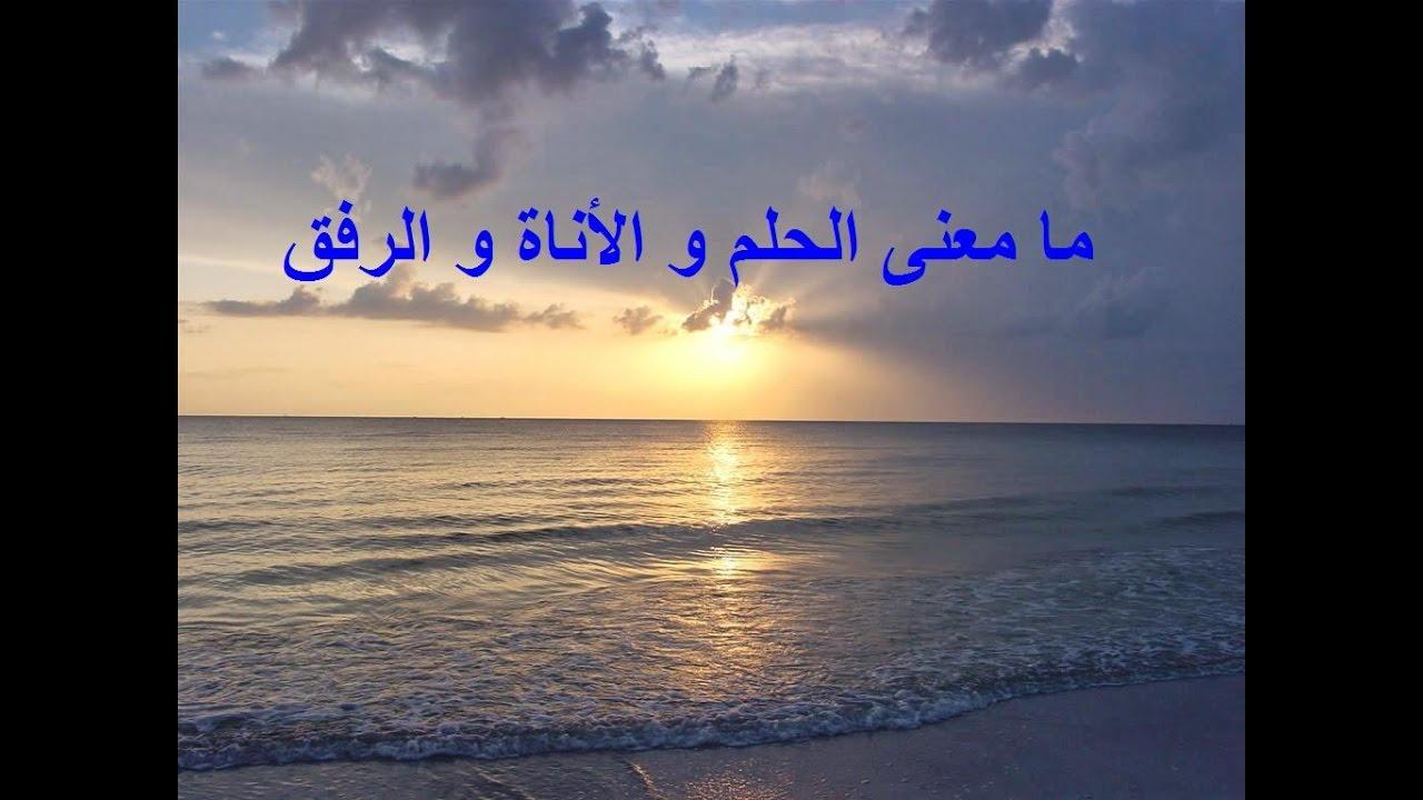 ما معنى الحلم و الأناة و الرفق الشيخ د محمد بن غيث Youtube
