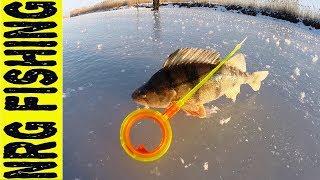 Риболовля на СУЛІ | Не потрапили!!!