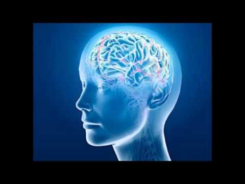 Nervous System - Isochronic Tones - Brainwave Entrainment Meditation