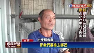 大雨毀心血!台東農田倒伏難採收 農民叫苦-民視新聞
