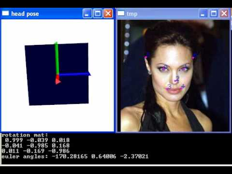 Quick and Easy Head Pose Estimation with OpenCV [w/ code] | More