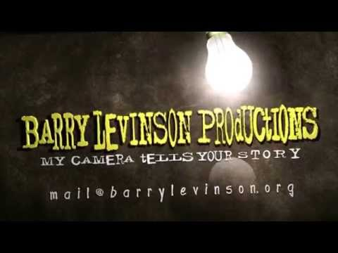 Barry Levinson Productions