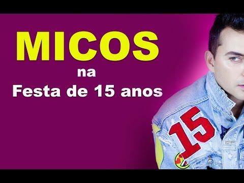 MICOS EM FESTA DE 15 ANOS