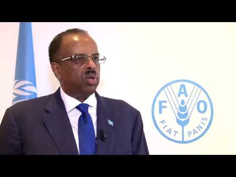 Remarks by Abdirahman Abdi Mohamed Hashi Minister for Fisheries and Marine Resources of Somalia