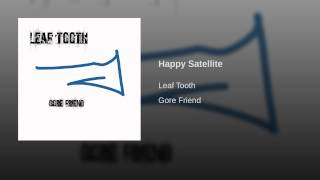 Happy Satellite