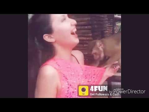 A Monkey Enjoy With Hot Girl ! Girl Video ! A Girl Hot