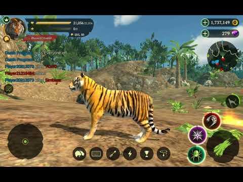 I Failed Epically-The Tiger PvP