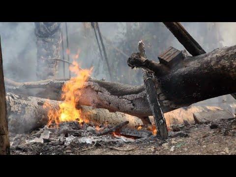 afpbr: Brasil combate os incêndios na Amazônia após novos apelos | AFP