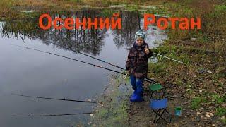 Ротан осенью Осенняя рыбалка Ротан Ловля ротана осенью озеро Плотина карась на донку