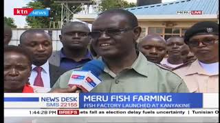 Good days ahead for Meru fish farmers as county launches fish factory