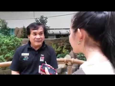 #MyPanda: Bamboo boost