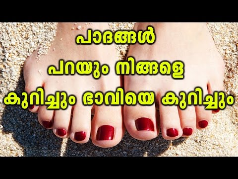 What Does Your Foot Shape Say About Your Personality? | Oneindia Malayalam