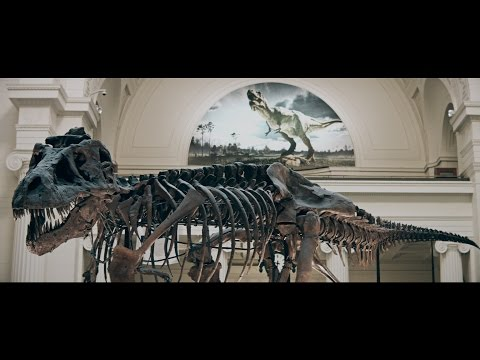The Field Museum brings T. rex arm to Argonne
