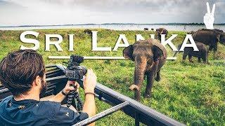 Awesome Elephant Encounter on Safari in Sri Lanka