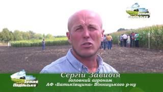 """День поля компанії """"Сингента"""" (кукурудза і соняшник)"""